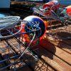Crabbing Checklist