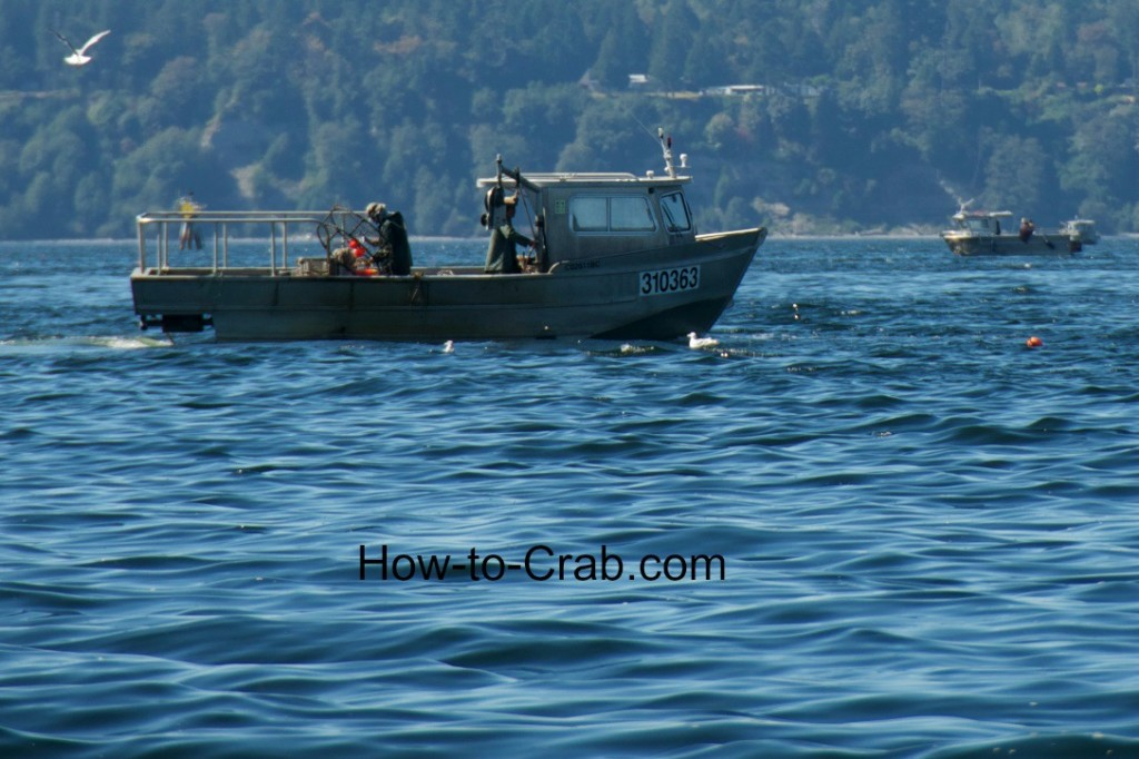Commercial crab fishing boats